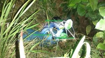 Las Choapas Ver.- Uno de los cuerpos ejecutados que fueron encontrados esta tarde. en Las Choapas Ver.-